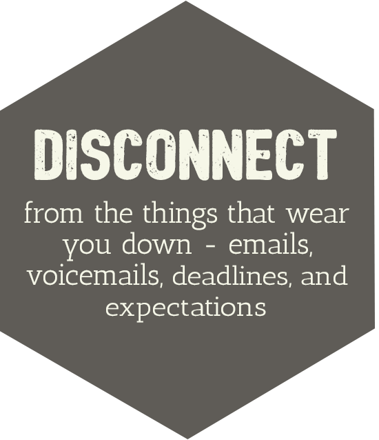 disconnect-brown